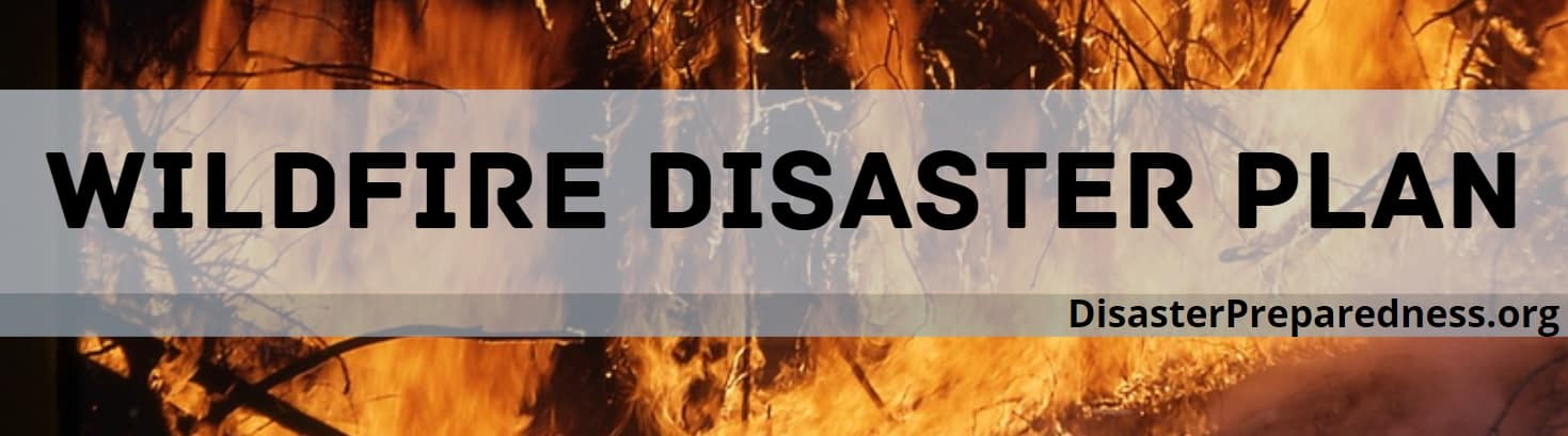 Wildfire Disaster Plan